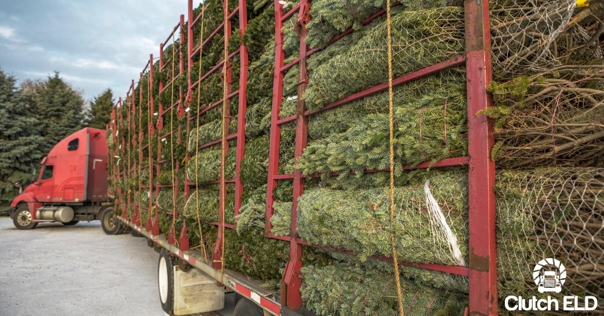 a truck filled with Christmas trees